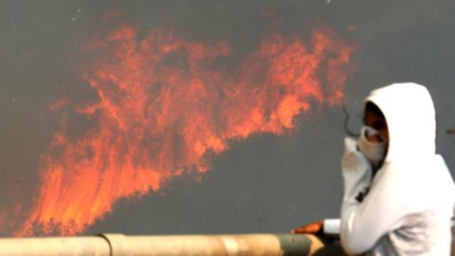 智利发生森林大火,百所房屋被毁
