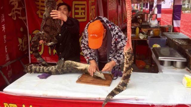 美食节惊现鳄鱼烤串,吃货不敢撸!