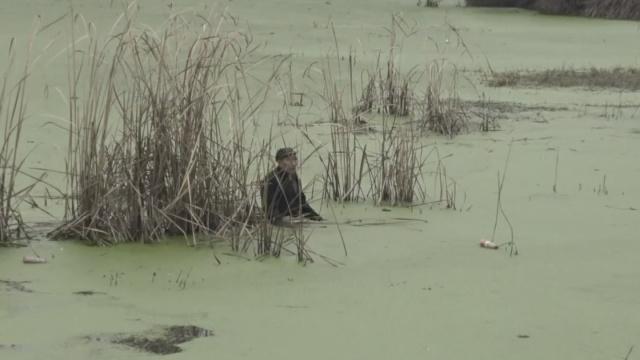 童心未泯,80老翁找鸭被困鱼塘