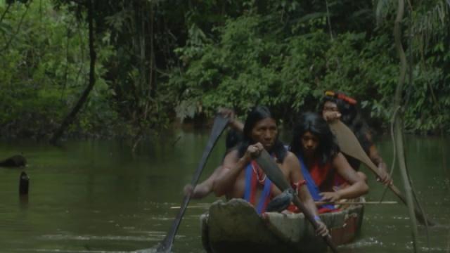 """一个亚马逊河部落的""""百年孤独"""""""
