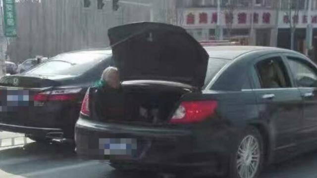 坐后备箱老人:自己要坐的,儿子很冤