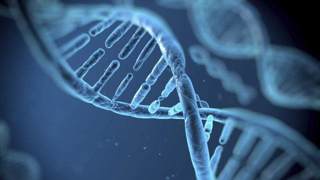 造就不公?基因编辑造就超级运动员