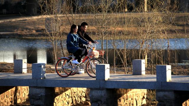 共享单车受虐记,N个城市的N种方式