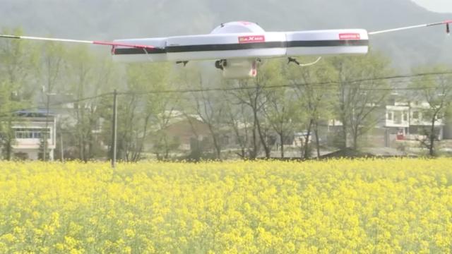 无人机喷洒农药,比人工快30倍