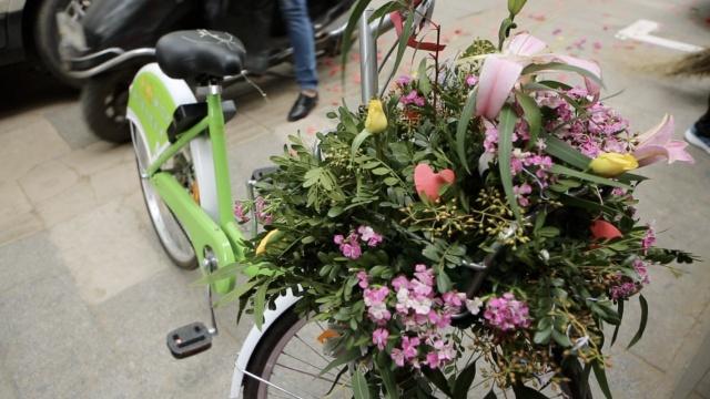 新人骑共享单车结婚,狗粮洒一路!