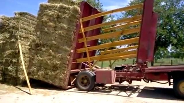 原来农业科技已经这么发达了