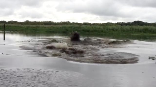 他往河里倒水引大浪,或将入狱60天