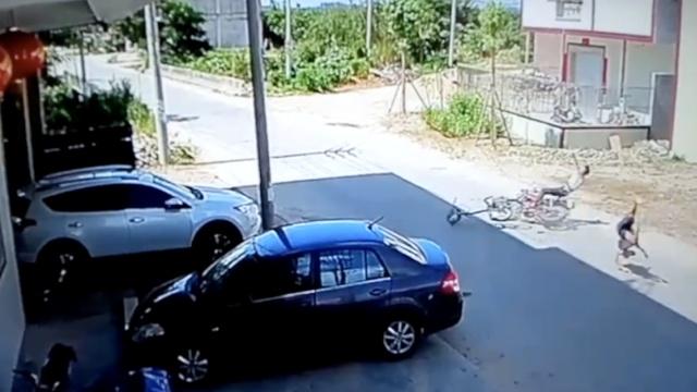 老人骑单车被摩托撞飞,单车解体