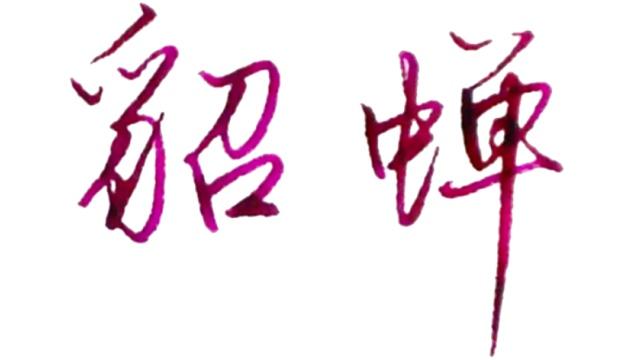 硬笔行楷写,9位游戏中的法师名字