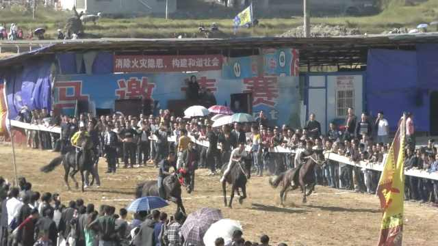 贵州水族端节赛马,马不听话闹滑稽