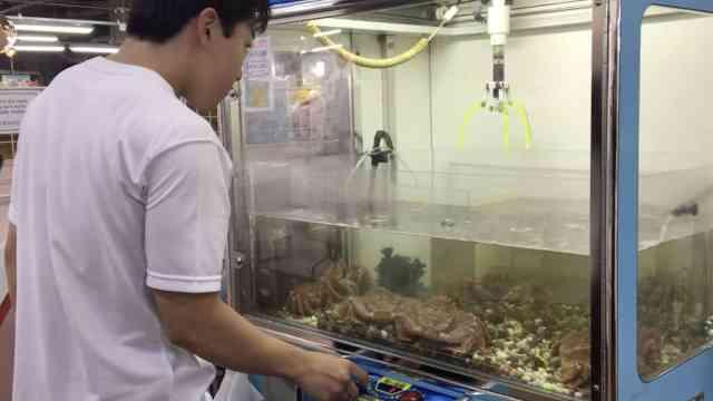 直播:抓娃娃拿手?来抓日本大活螃蟹