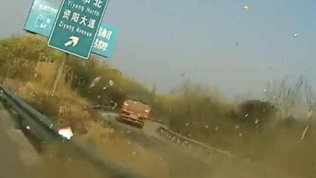 老司机高速畅谈心得,然后翻车了