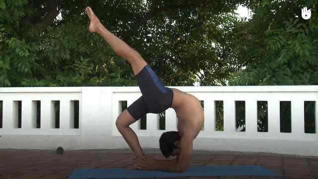印度古式瑜伽教学:飞轮式