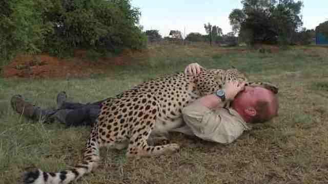 他和猎豹分别1年,重逢后仍亲如兄弟