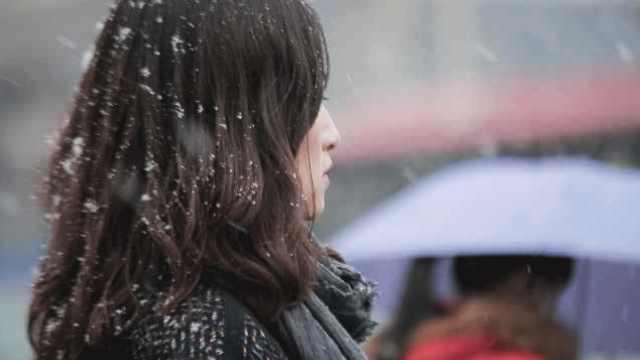 北京大雪里的三十五个瞬间