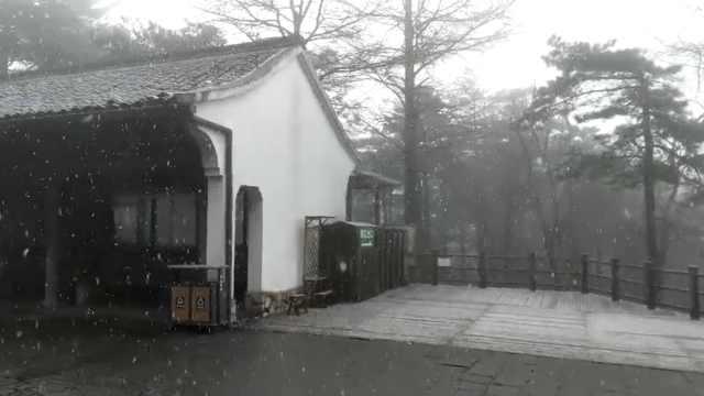 美景!阳春三月杭州山区飘雪花