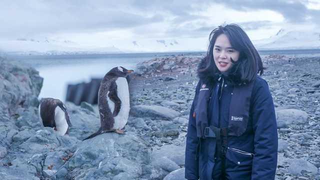 南极旅行看企鹅,只能远看!