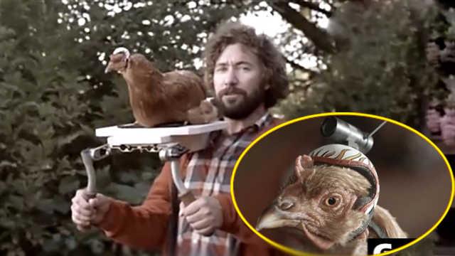 在雞頭上綁一個攝像頭畫面會怎樣?