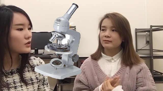 中国理科学姐在日本读研是什么体验