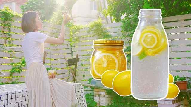 怎能少了糖渍柠檬,夏天就靠它了