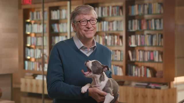 比尔·盖茨带小奶狗推荐夏季书单