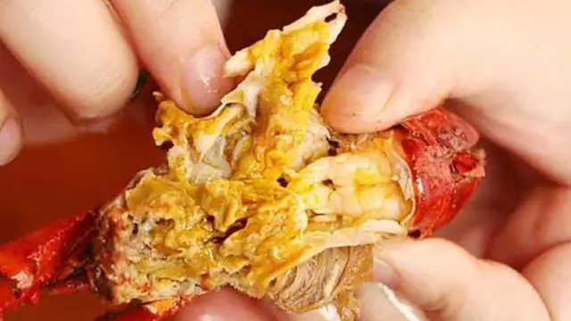 龙虾的虾黄是什么?到底能不能吃?
