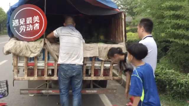 她一条朋友圈,瓜农3小时卖7千斤瓜