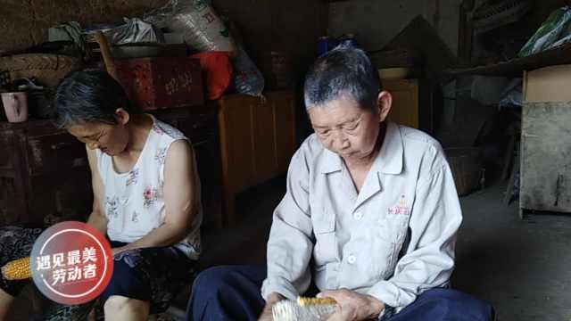 黄昏狗粮!7旬夫妇每天做12小时农活