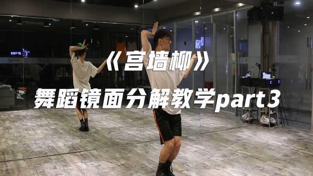 《宫墙柳》舞蹈镜面分解教学part3