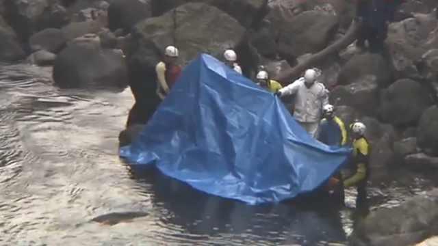 日本灭门惨剧,疑男子杀全家后自杀