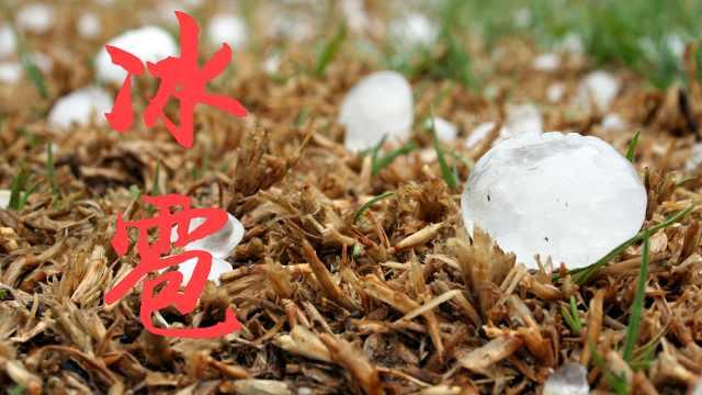 自然科普小百科之冰雹