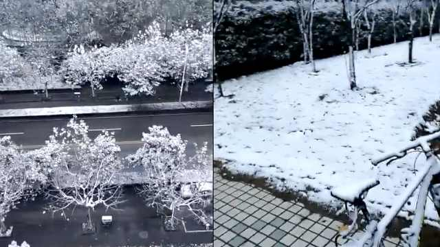 上海今冬第一场积雪,路人疯狂拍照