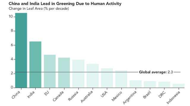 地球比20年前更绿了,中国贡献大