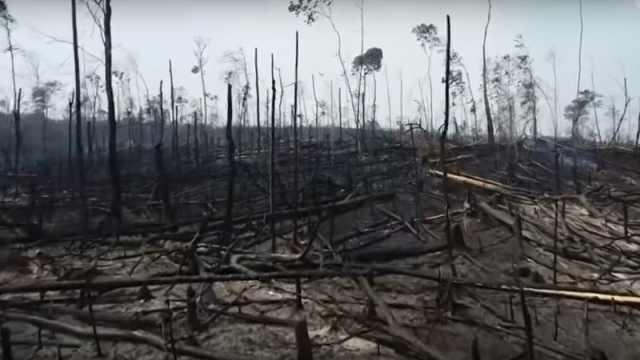 痛心!航拍被大火烧毁的亚马逊雨林