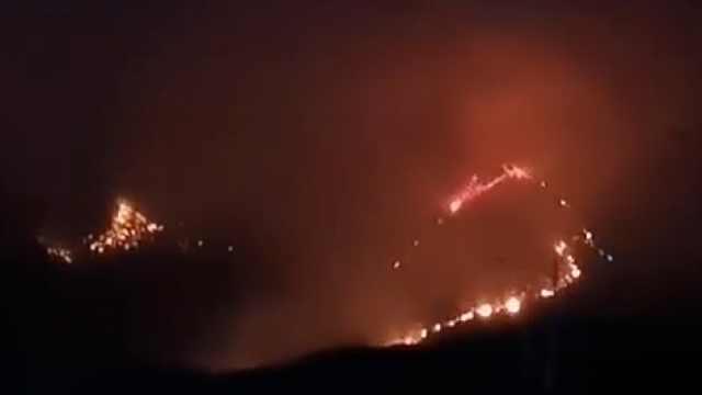 江西突发森林火灾,200余人紧急扑救