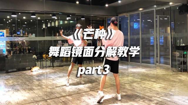 白小白《芒种》舞蹈镜面分解教学p3