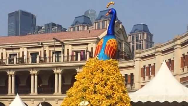 民园广场传统与现代结合