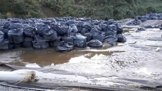 海贝斯引洪水,福岛核污染物被冲走