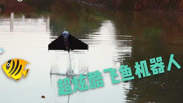 水下飞鱼机器人的超炫酷慢镜头画面