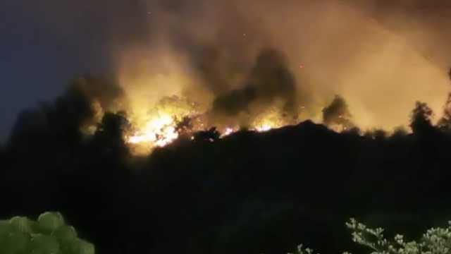 东莞发生森林火灾,警方:系人为纵火