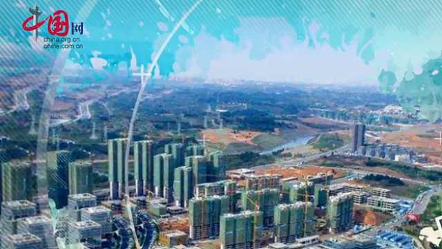 扩大自贸试验区,寻找发展新机遇