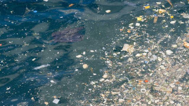 呛一口海水相当喝四百多颗塑料微粒