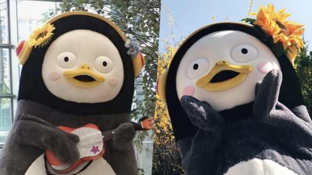 击败BTS?这只卡通企鹅成国民偶像