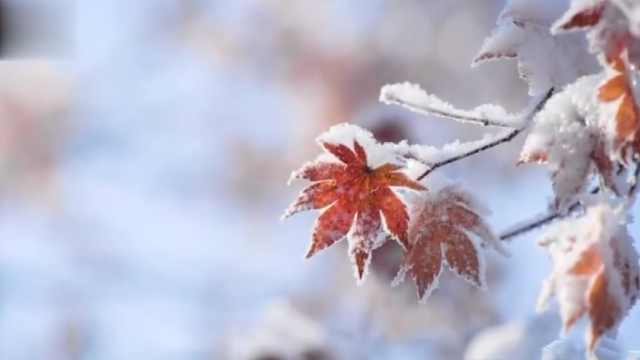 走进本溪:雪后美景如画般美丽