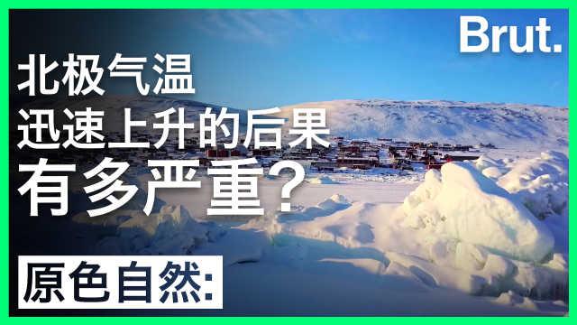 北极气温迅速上升的后果有多严重?