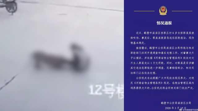 警方通报河南女童被狗撕咬1分钟:肇事犬捕杀,狗主人罚1万
