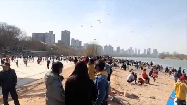 黄河边现千人踏春放风筝,景区:全天巡逻严禁聚集