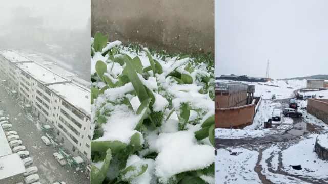 甘肃甘南5月飞雪气温跌至零下,城市一夜穿越入冬