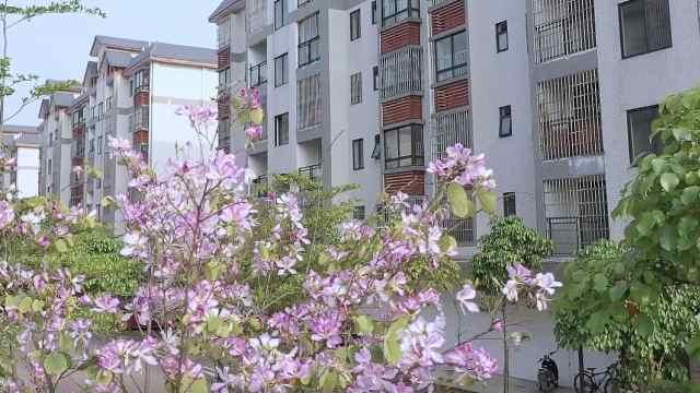 【广西】柳州脱贫攻坚成绩单