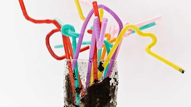 上海将禁用不可降解一次性塑料吸管